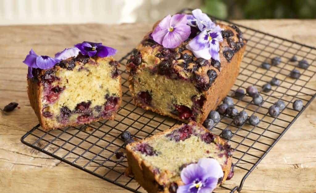 1hr Simple Lemon Blueberry Loaf Cake - Alphafoodie