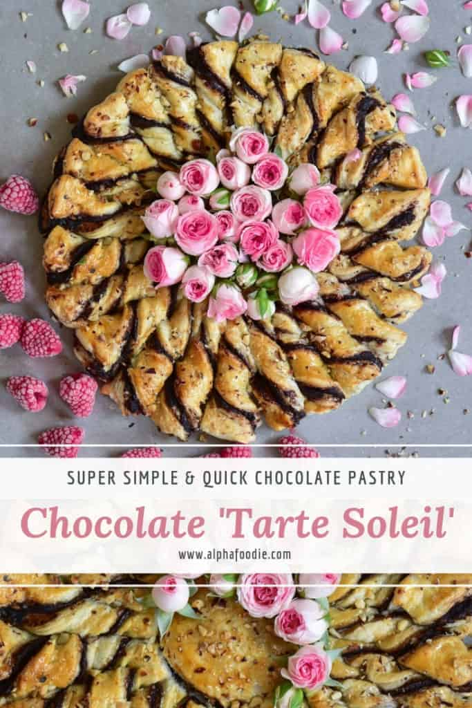 chocolate pastry. tarte soleil. vegetarian dessert with chocolate