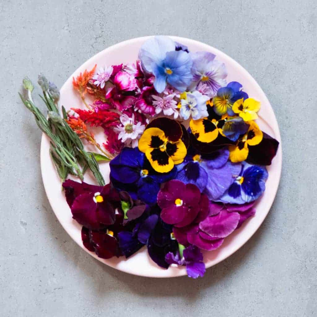 edible flowers for healthy yogurt granola cups