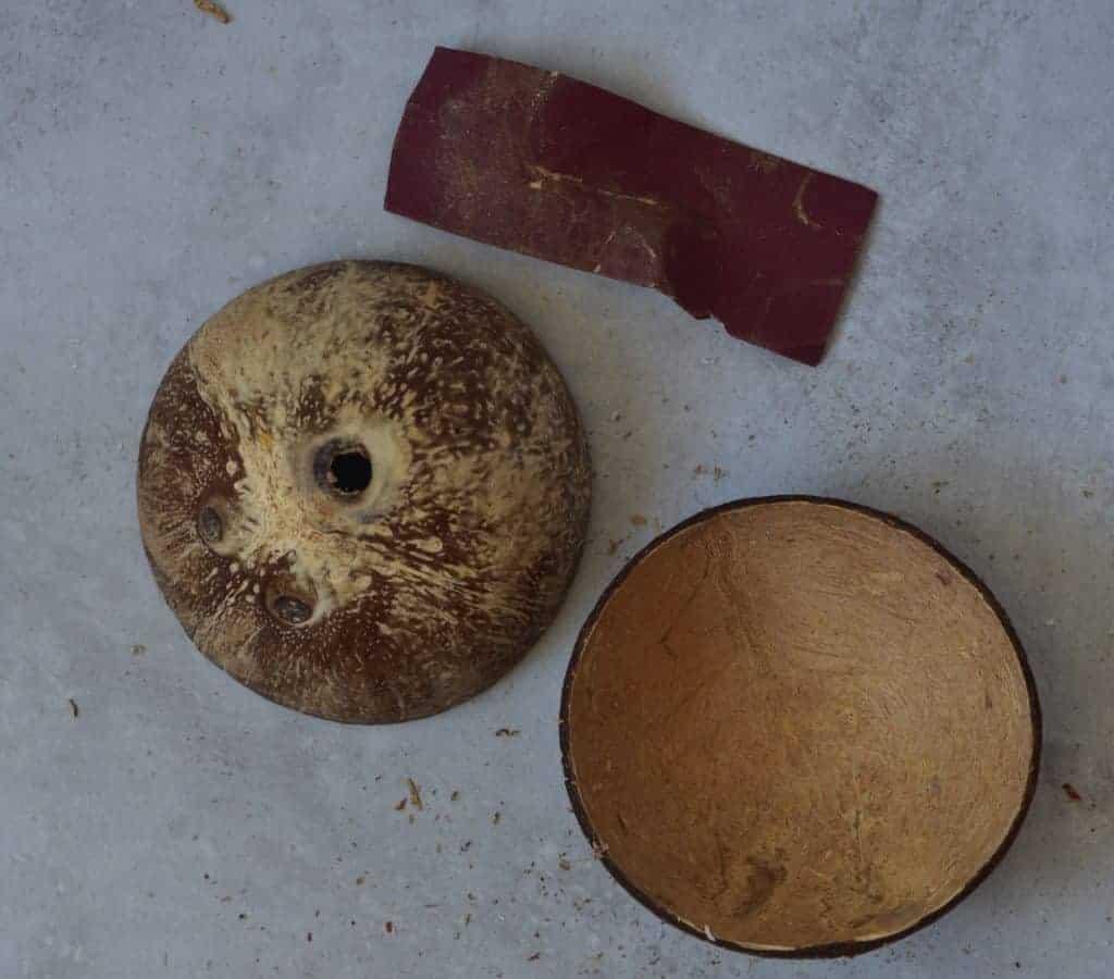 sanded coconut bowls