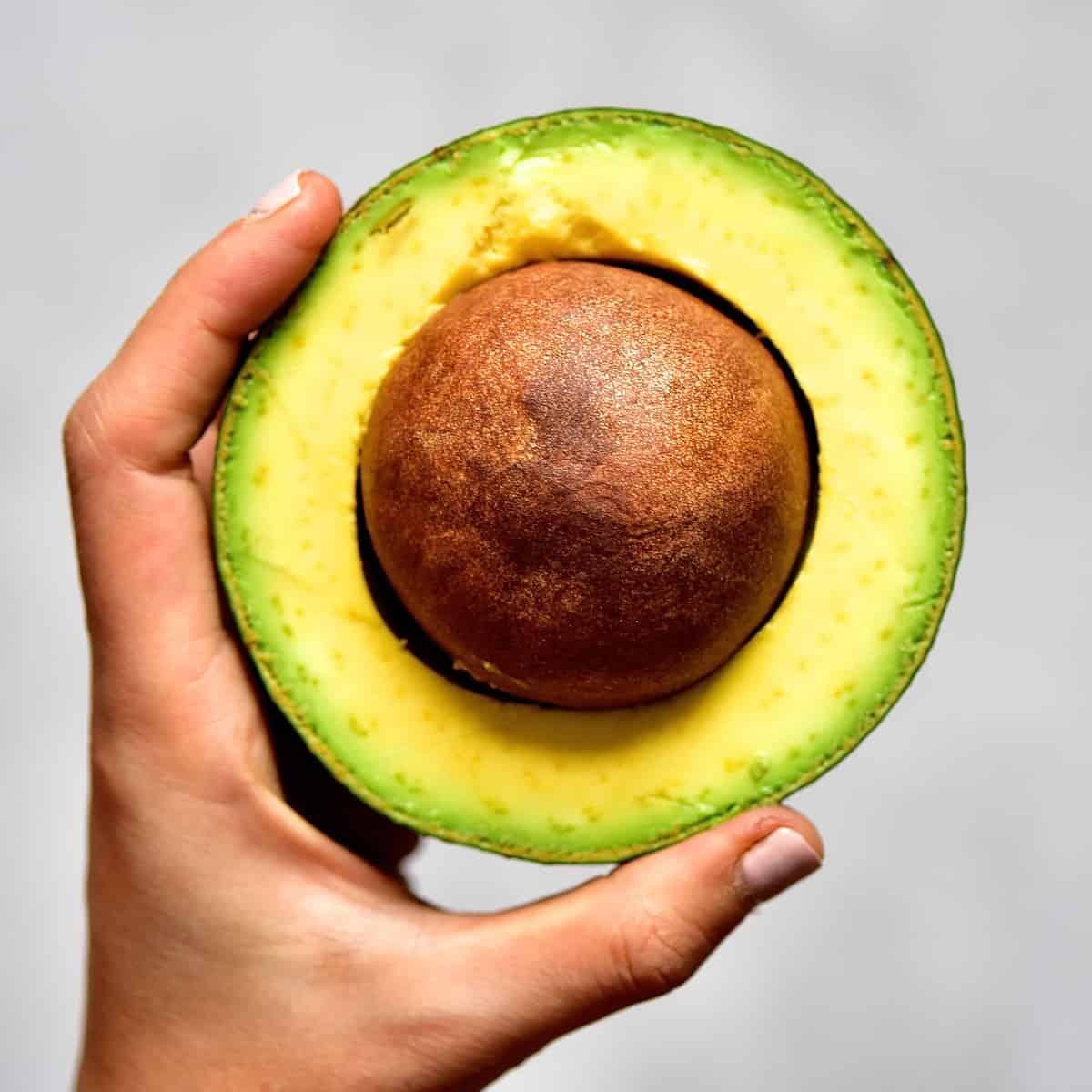 extra large avocado for avocado frosting