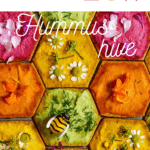 close up of beehive cracker design with hummus dips