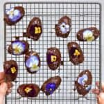 Chocolate coated dates decorated with edible flowers