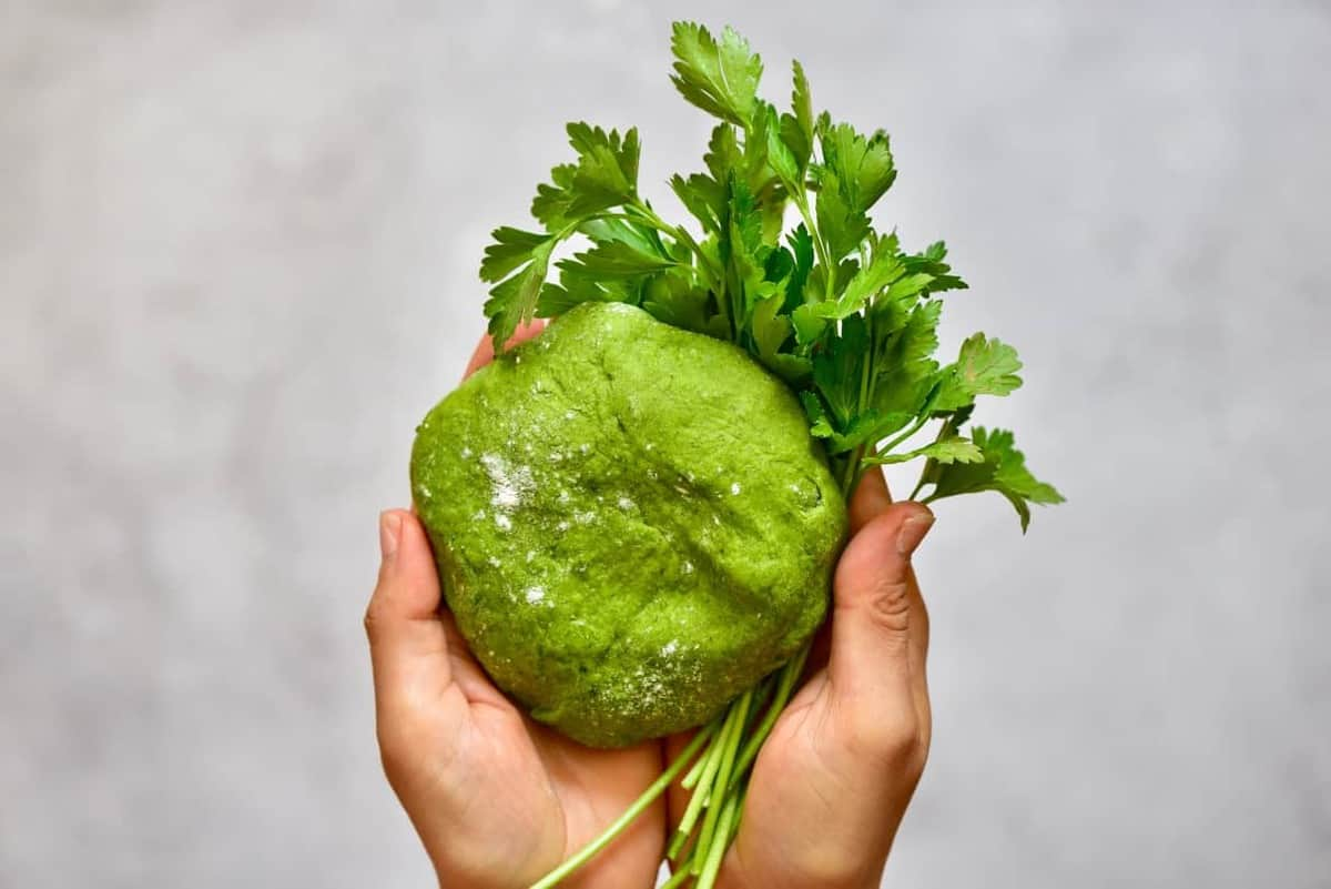 Green pasta dough ball with parsley being held in hands
