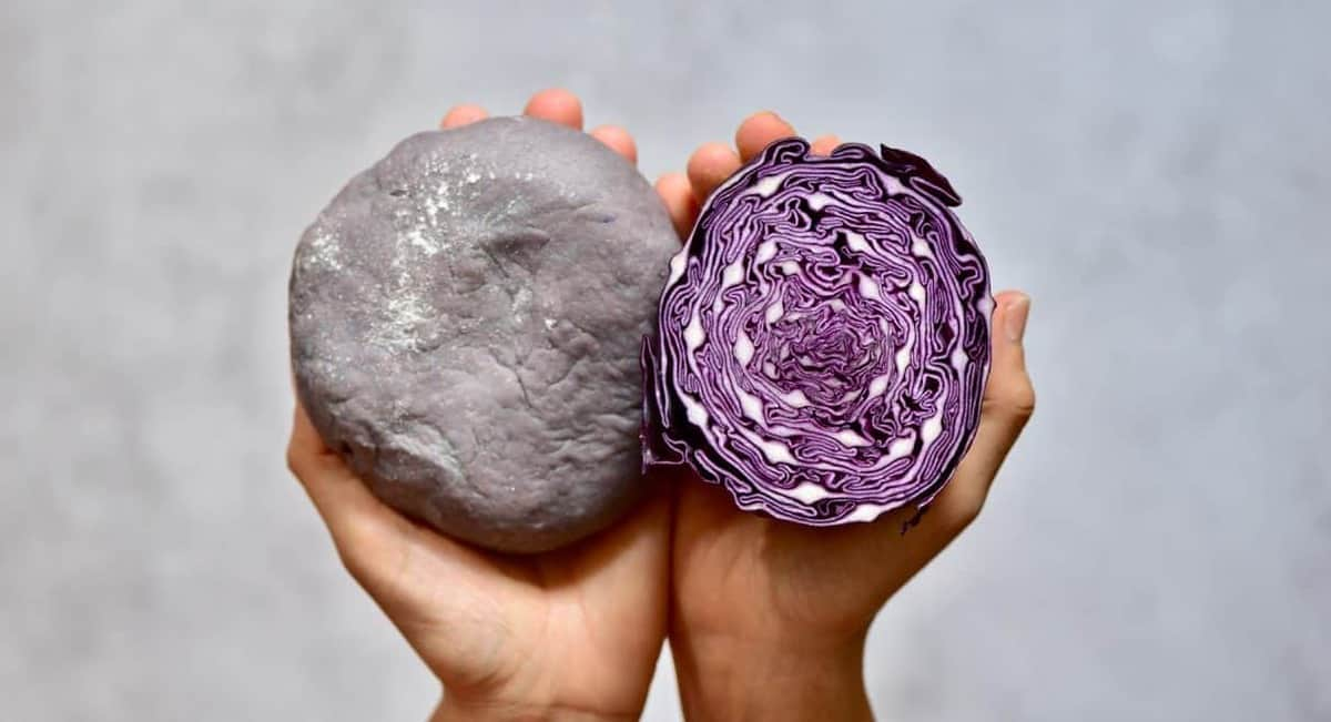 homemade purple pasta with cabbage