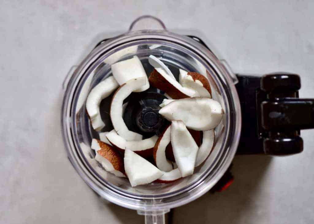 A blender with pieces of coconut