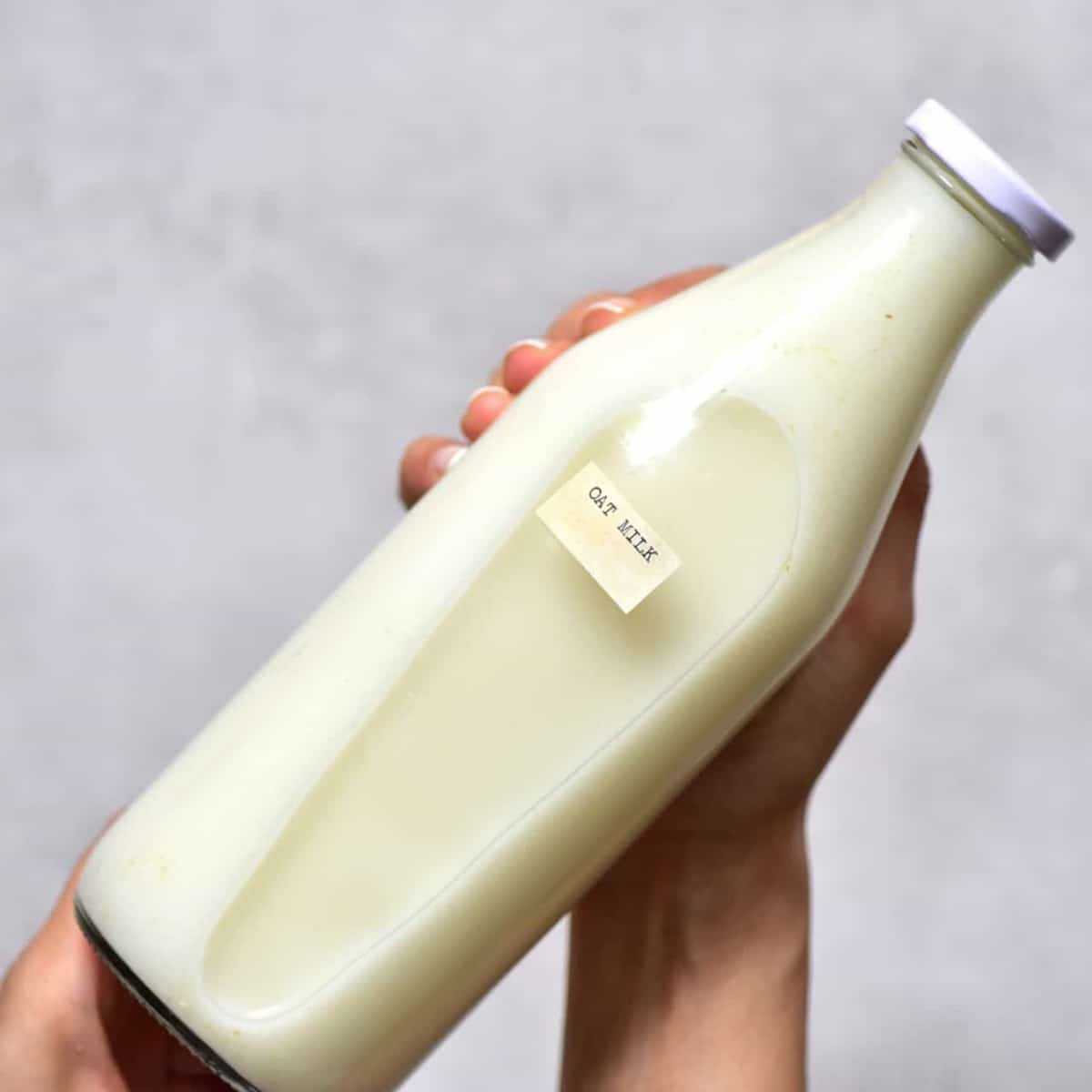 homemade oat milk in a glass bottle