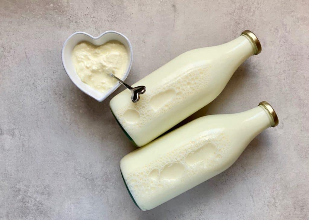 milk and yogurt starter for homemade natural yogurt