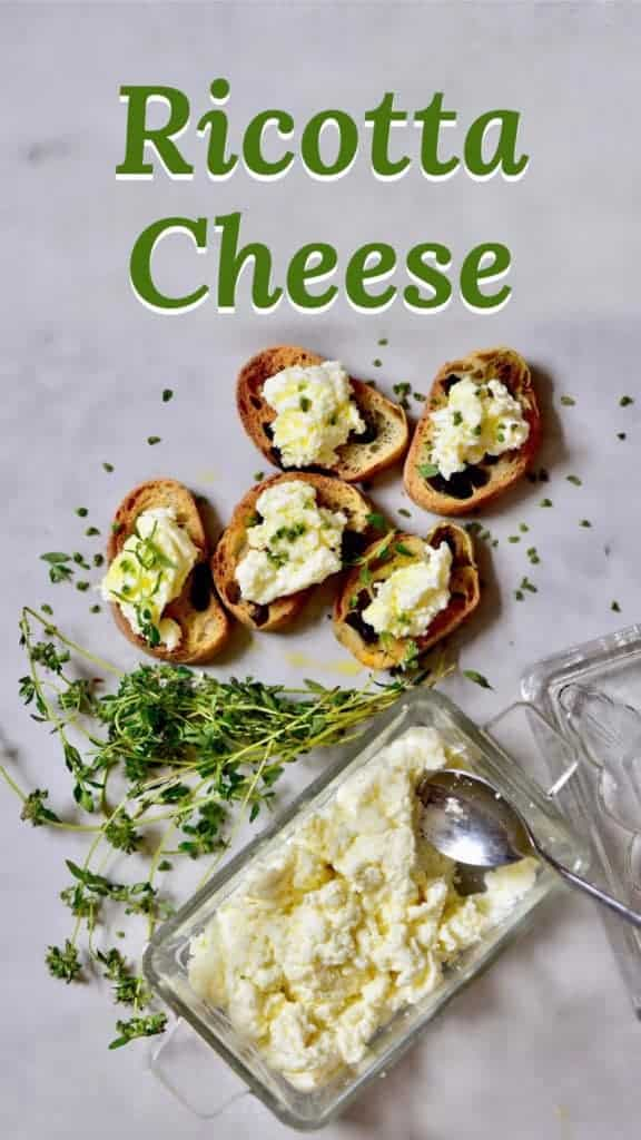homemade ricotta cheese with herbs on toast