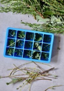 storing herbs to preserve them with oil