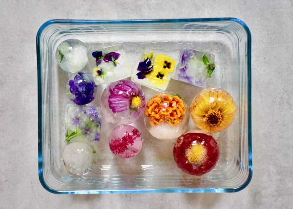 how to store edible flowers. make crystal clear flower ice cubes