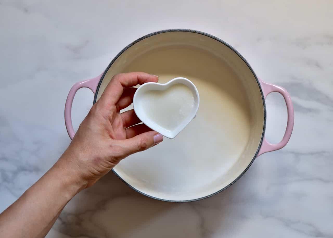 using powder yogurt started,