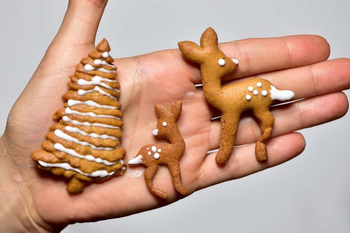 Christmas gingerbread cookie recipe