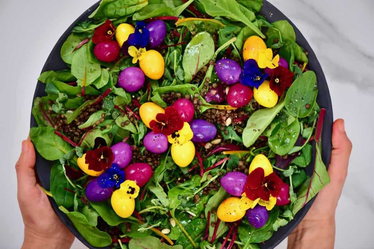 naturally dyed pickled eggs - rainbow quail eggs over leafy green lentil salad