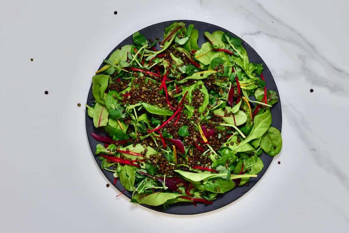 lentil and mixed leaf salad