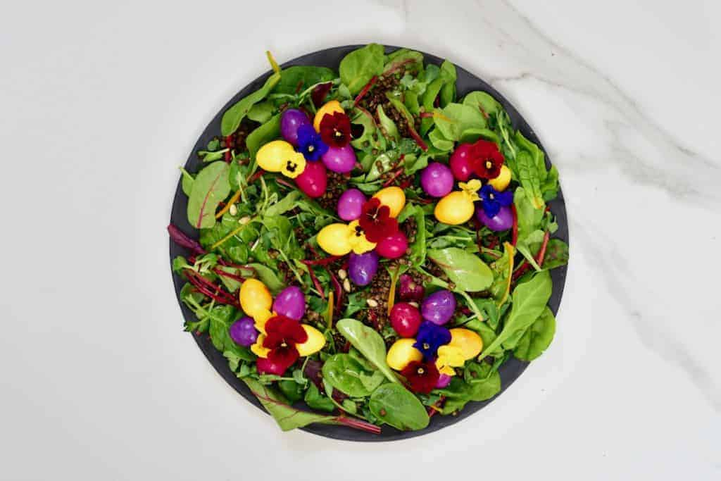 naturally dyed pickled eggs - rainbow quail eggs over a lentil and leafy green vegetable salad - an easter centrepiece