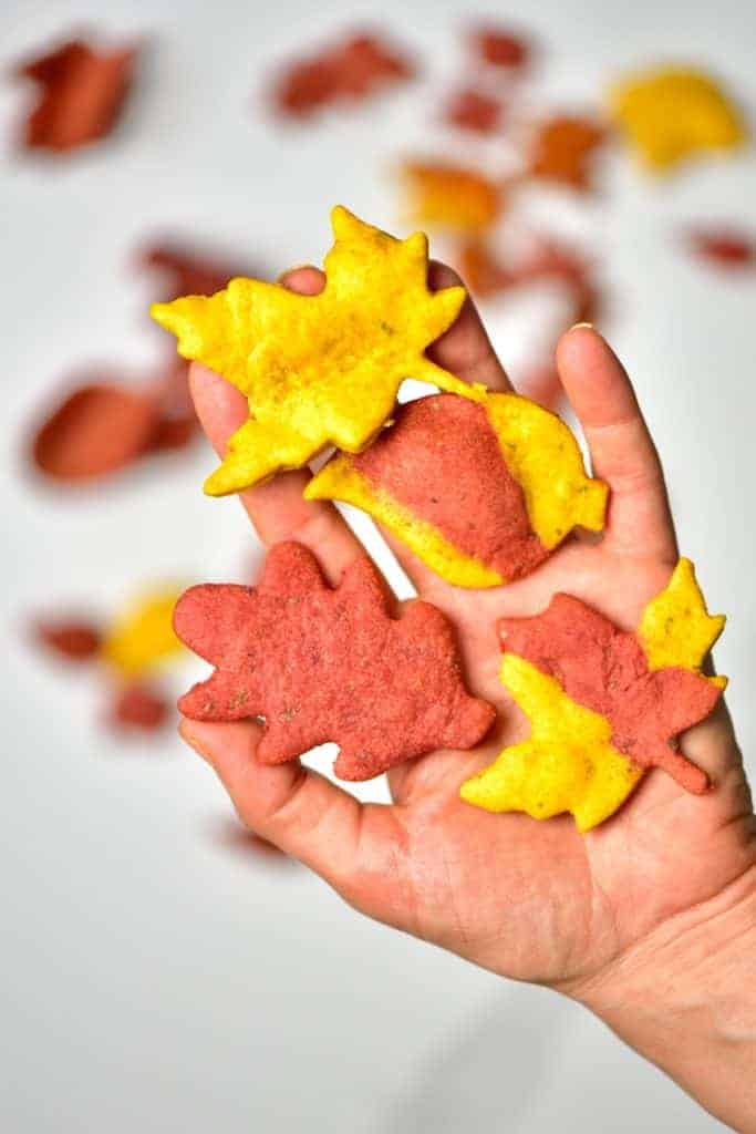 Autumn Leaf Crackers in a hand