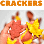 Autumn Leaf Crackers on a hand