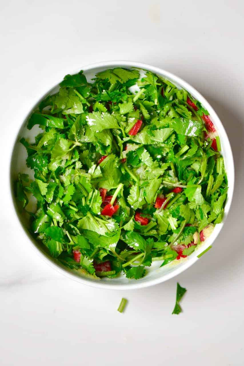 Mixed salsa with coriander and chilli
