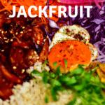 Close-up of Donburi Jackfruit bowl