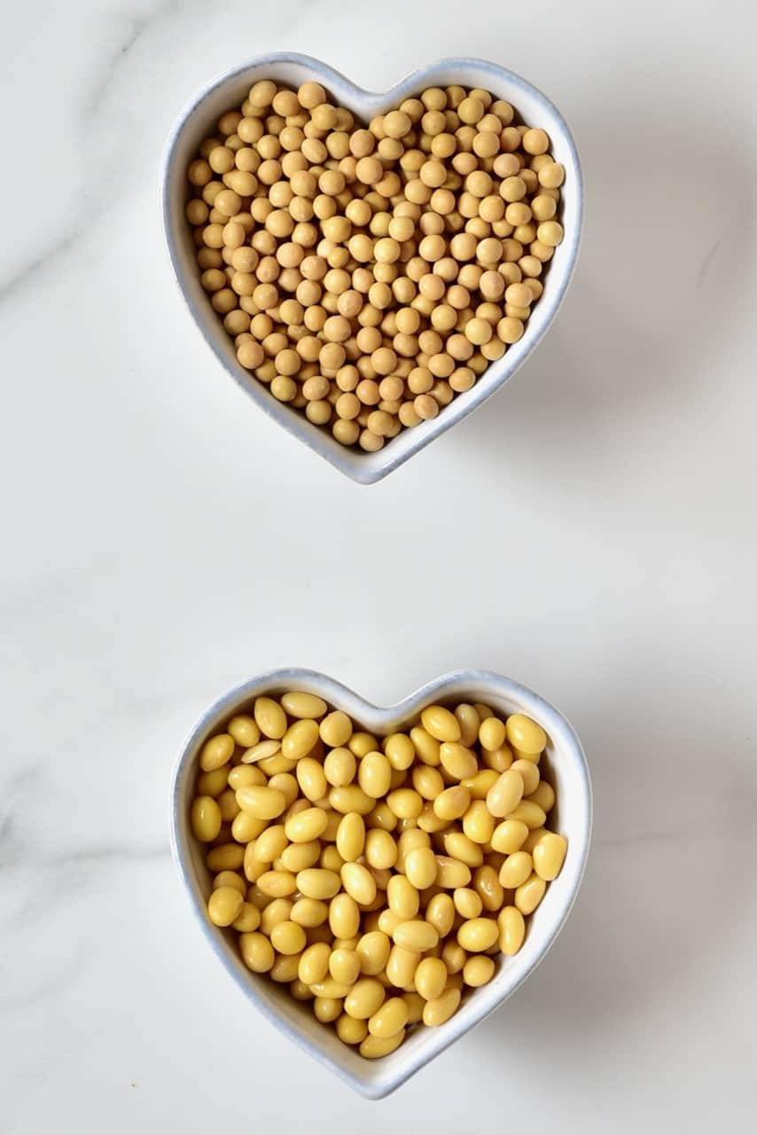 dry soy beans and soaked soy beans