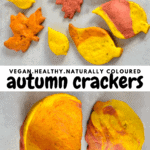 designs of Autumn Leaf Crackers and a soup bowl cracker