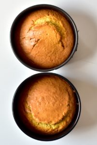 Baked coconut cake in two tins
