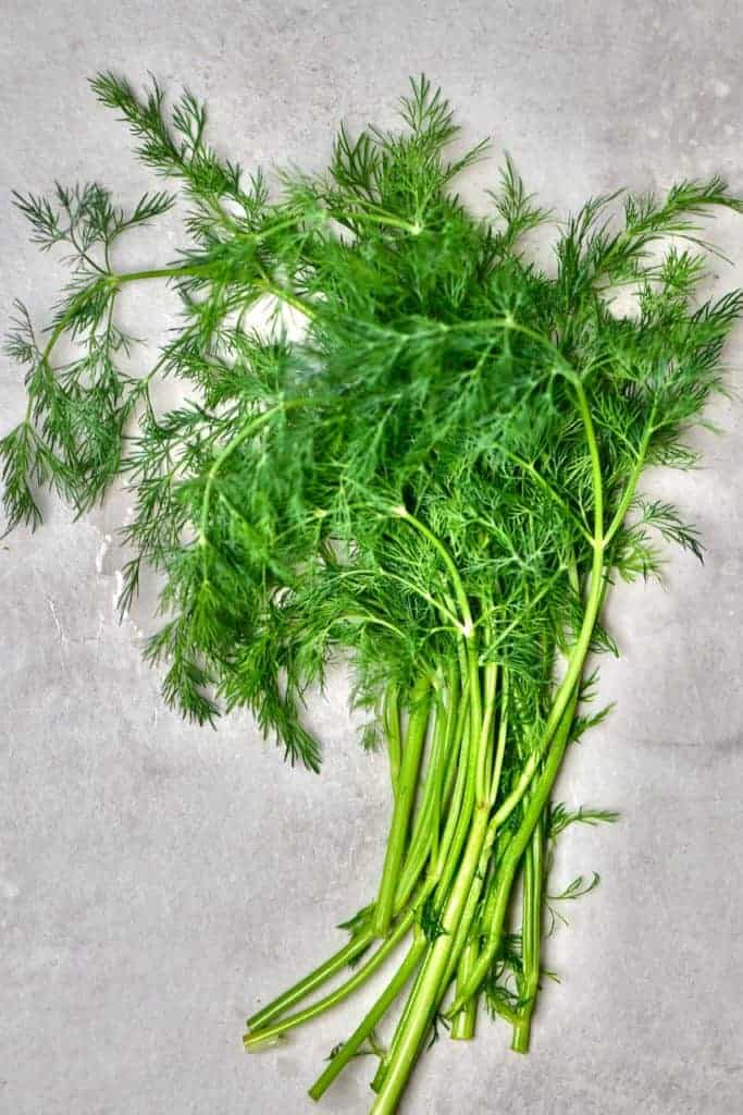 A handful of fresh dill