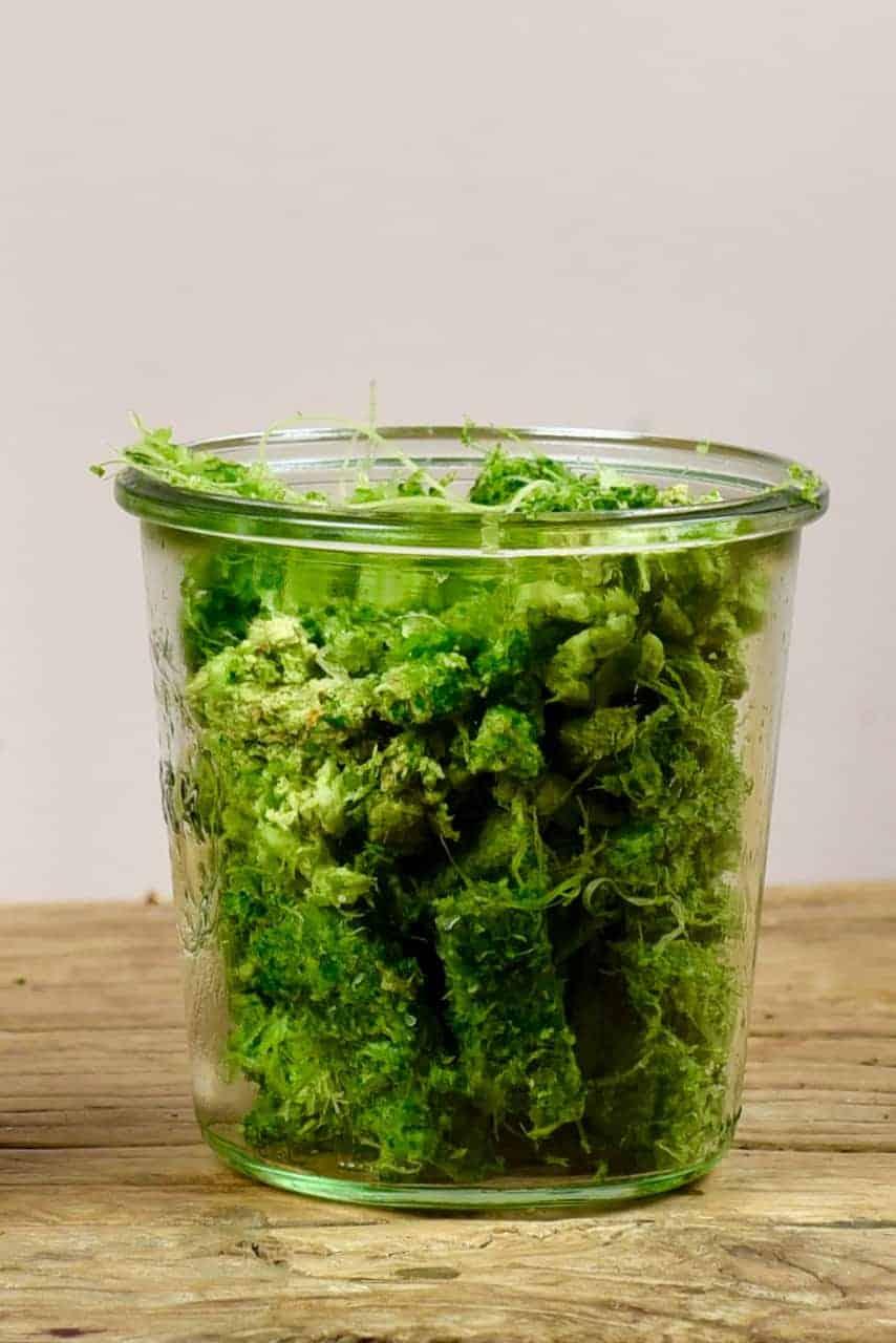 Celery leftover fiber in a glass