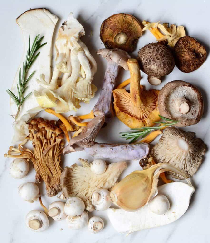 immune boosting Mushrooms selection