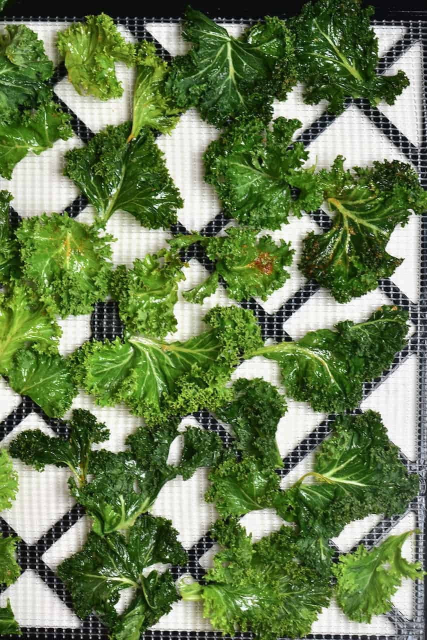 Arranged kale leaves on a tray