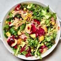 Square tuna salad photo