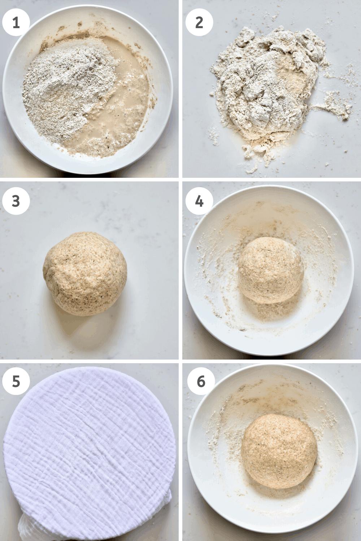 Whole wheat Bread dough mixing