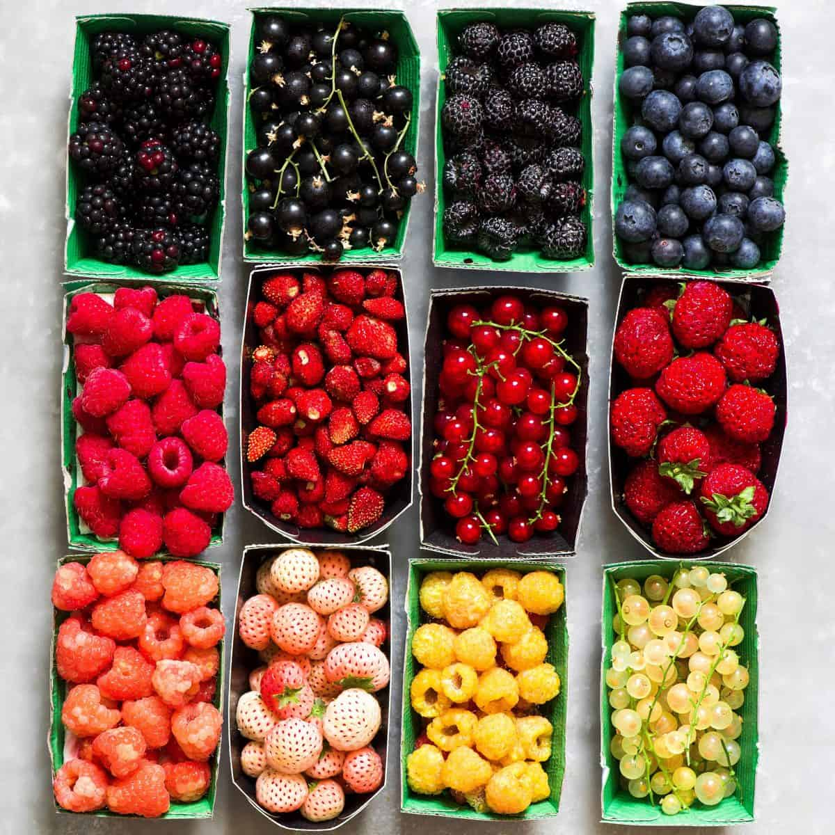 Different fresh berries types
