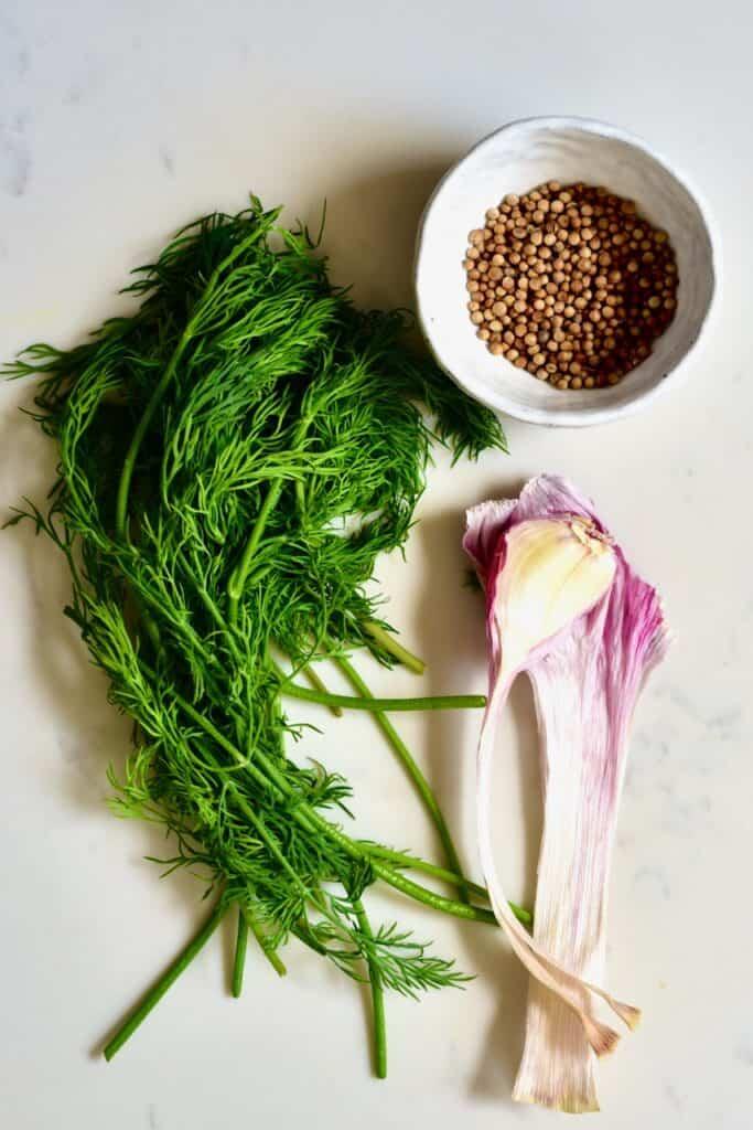Dill garlic and coriander seeds