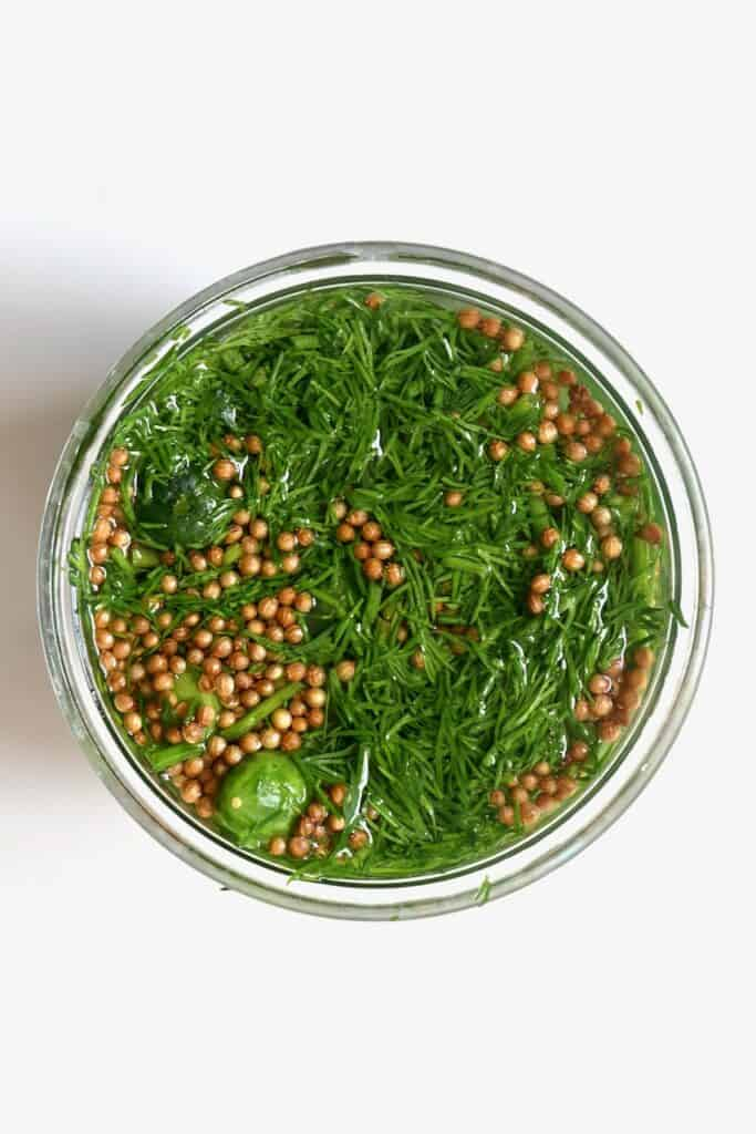 Dill and coriander seeds in a jar for pickling cucumbers