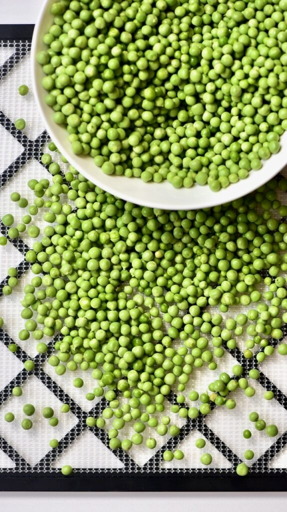 putting green peas on a dehydrator tray