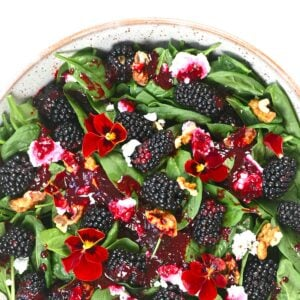 Blackberry Salad Square photo
