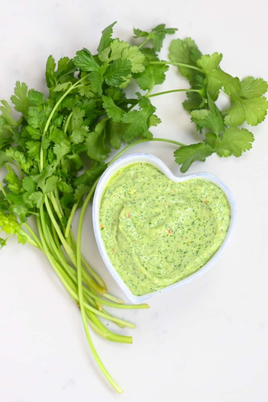Creamy Avocado Cilantro Sauce with cilantro on the side