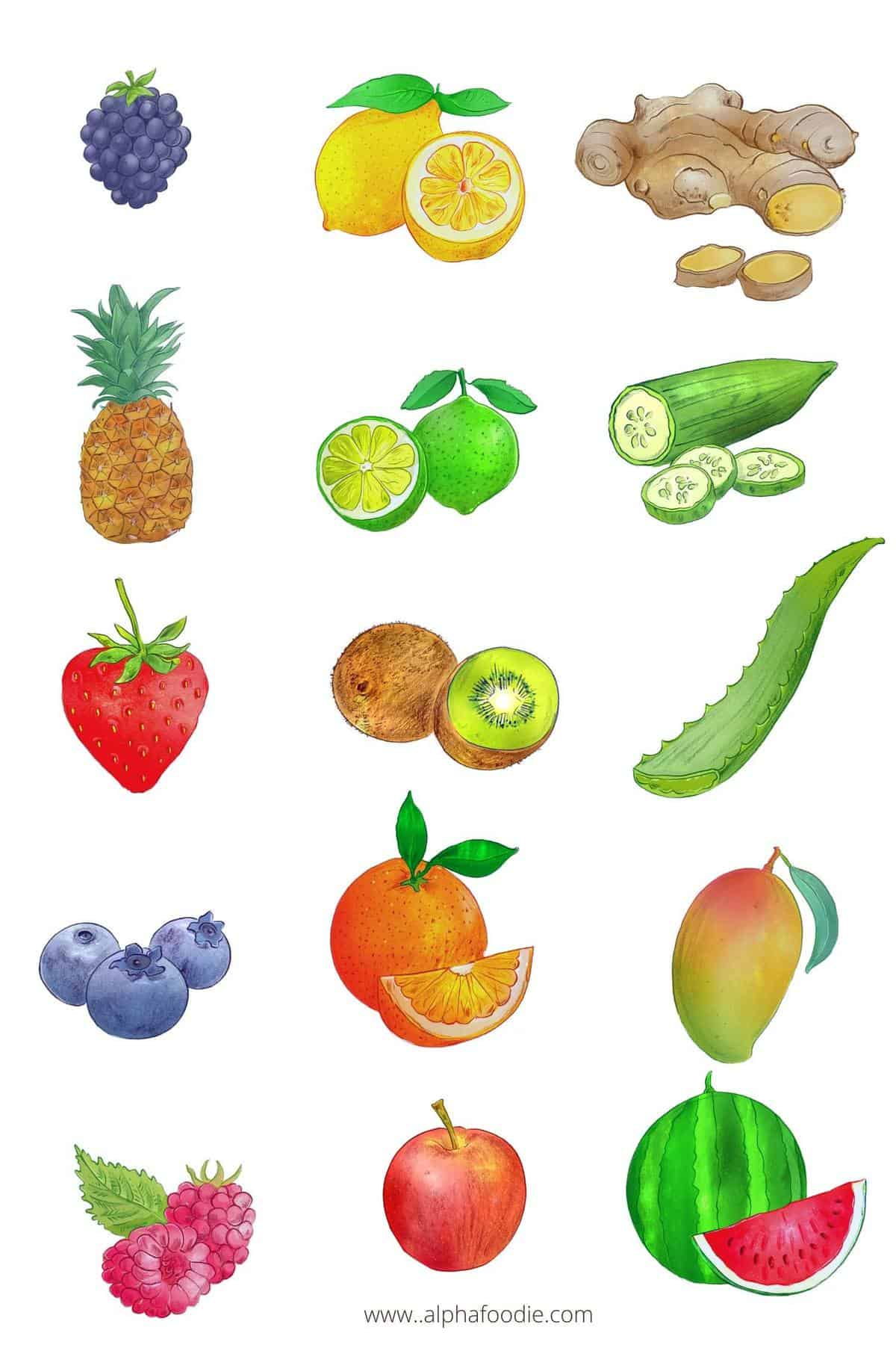 Drawings of fruit to make Flavored Water