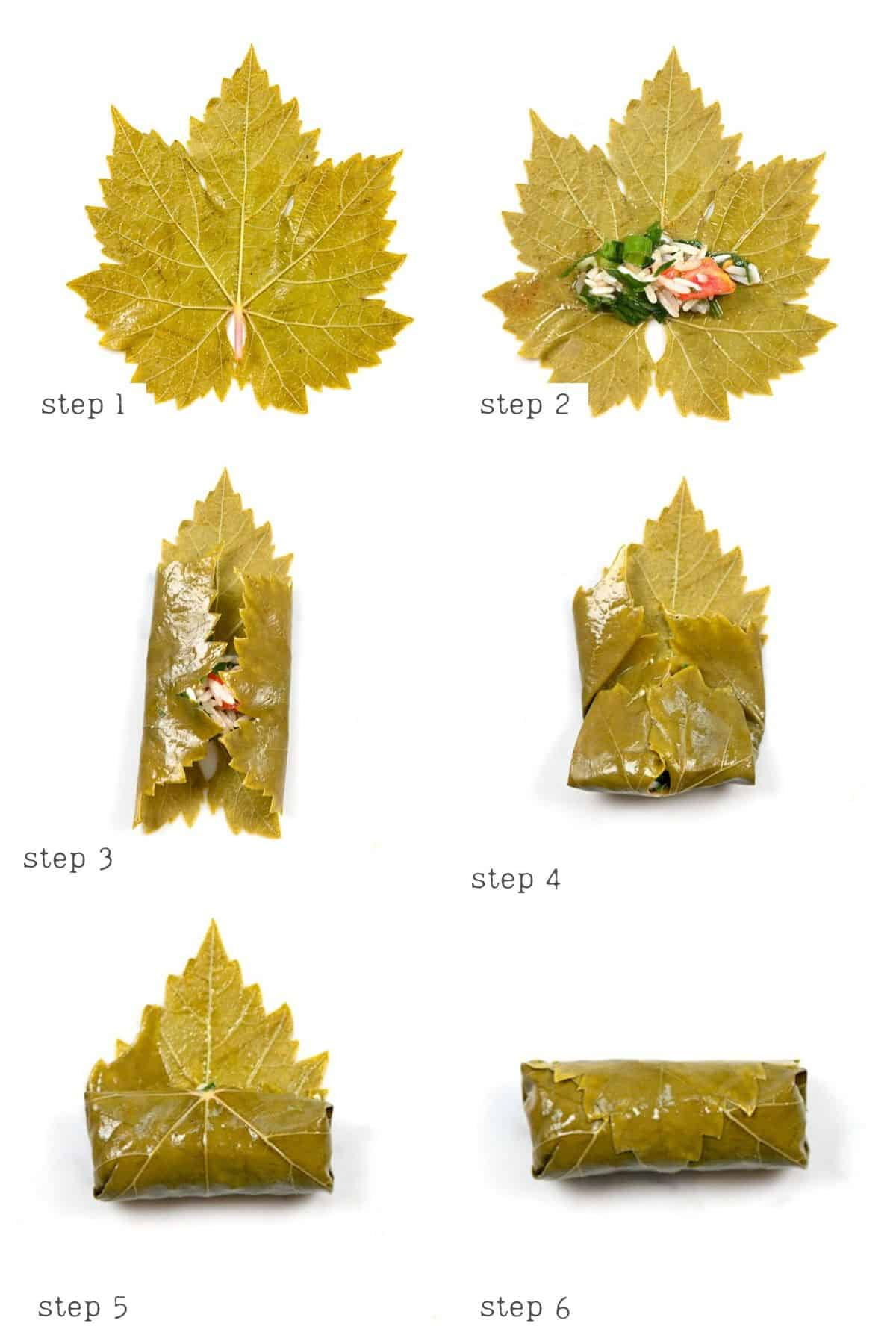 Steps for wrapping vine leaf