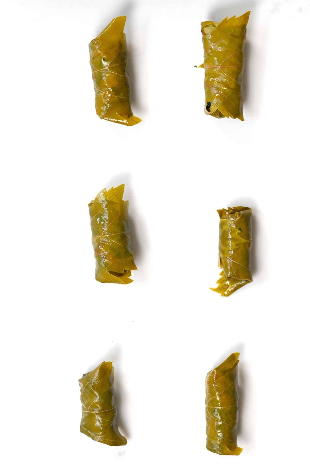 Six stuffed vine leaves