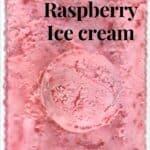 Closeup Scoop of Raspberry ice cream