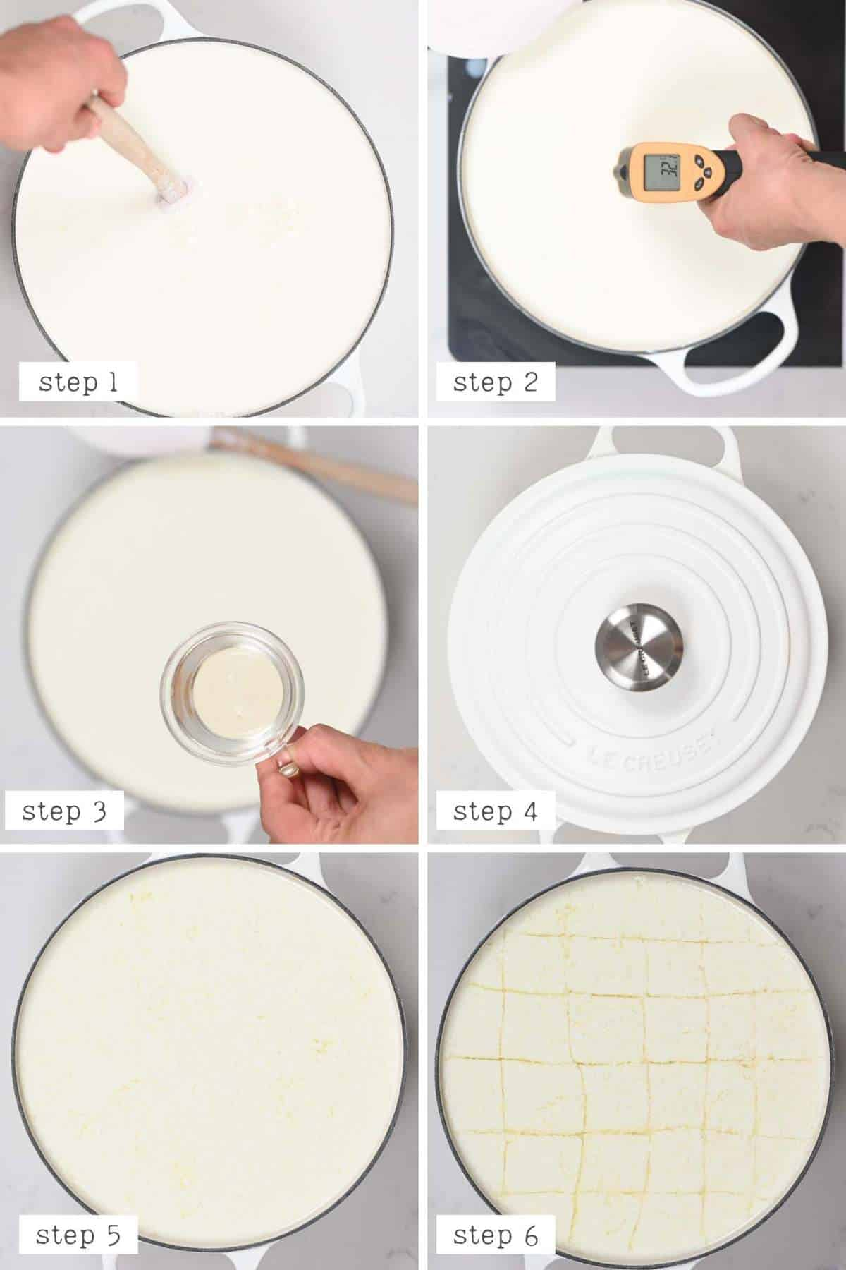 Initial steps for making mozzarella Making and cutting the curds