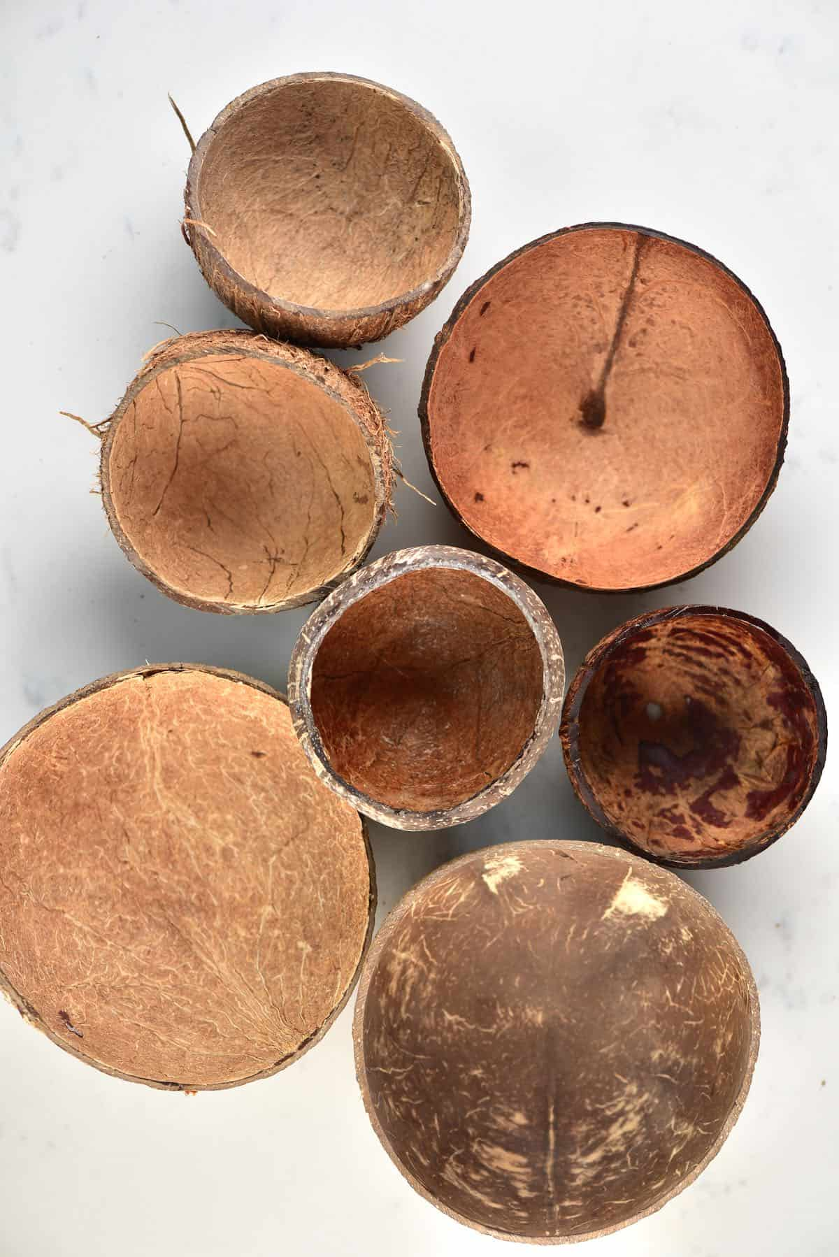 Seven Coconut shells bowls on a flat surface