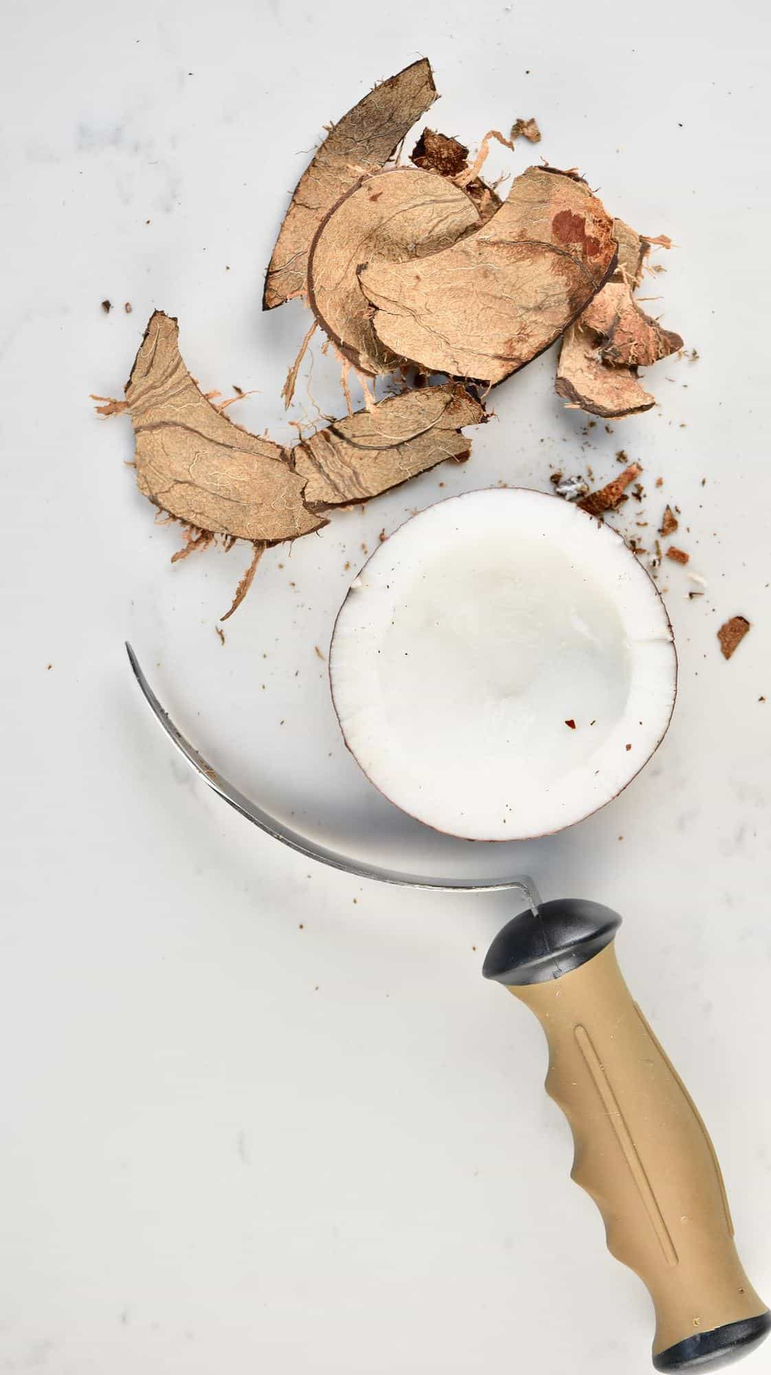 Broken coconut shell, coconut meat and a tool for removing the meat from the shell