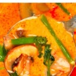 A close up of tom yum soup