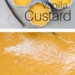A close up of Vanilla Custard and Vanilla Custard in three bowls