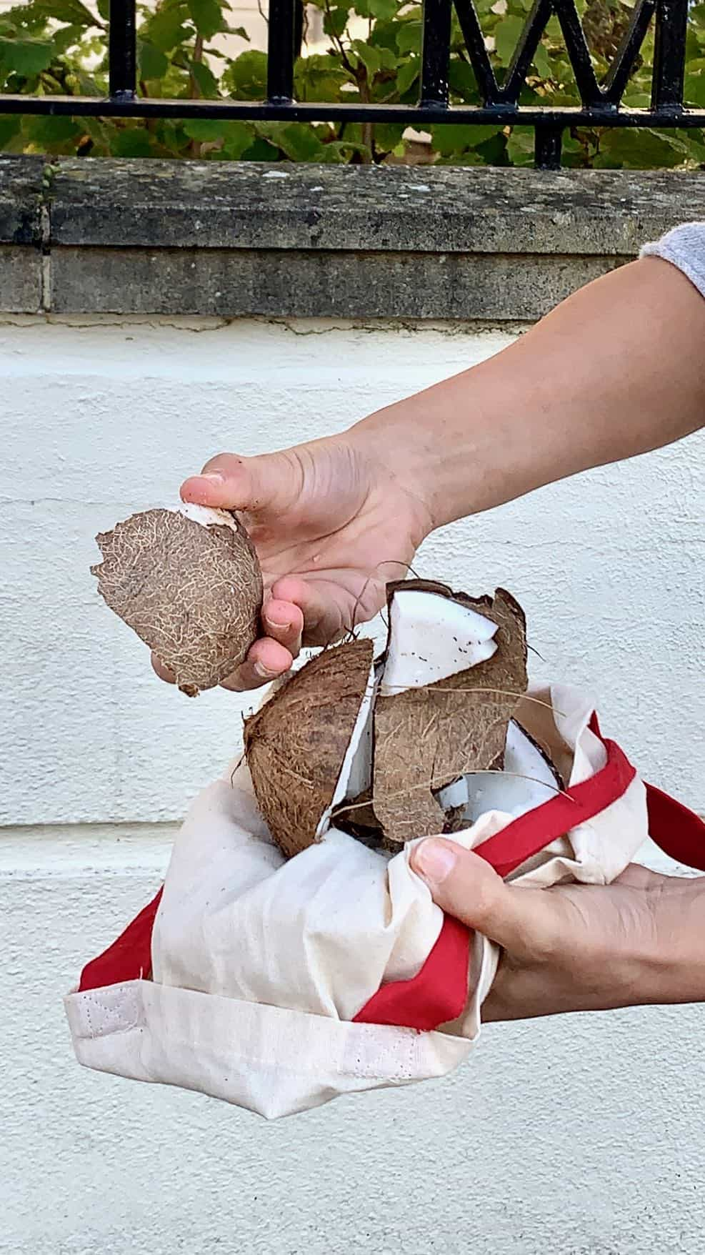 A coconut broken using the bang method