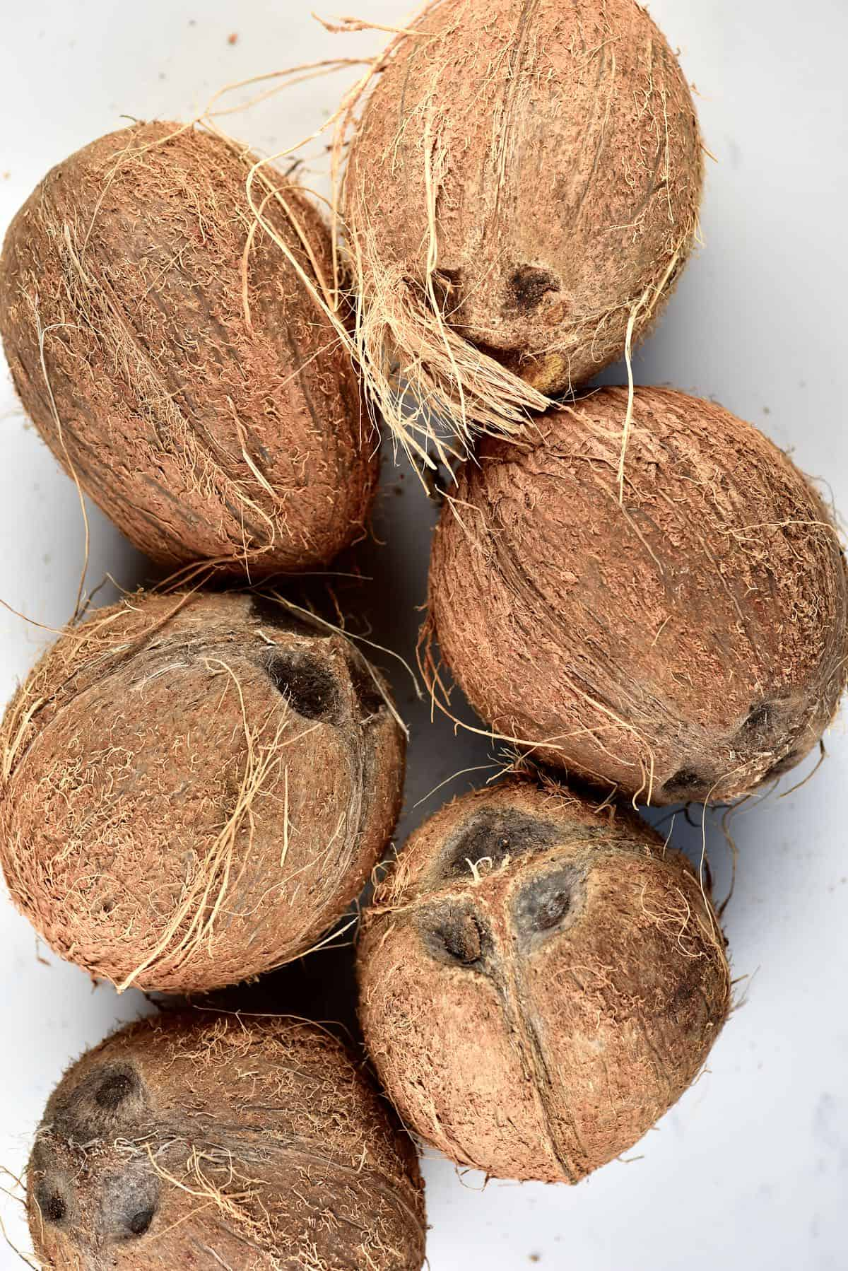 6 coconuts on a flat surface